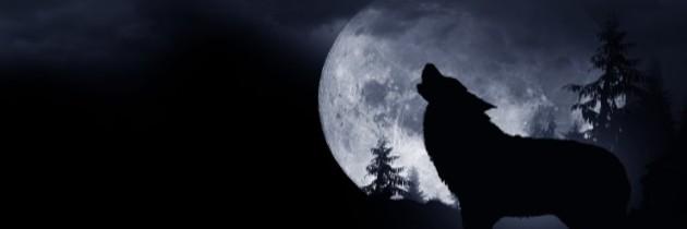 "LEO & FULL ""WOLF MOON"" CEREMONY"