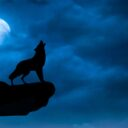 """The First Full Moon of 2021: A Leo """"Wolf Moon"""""""